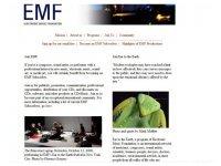 Electronic Music Foundation (GRM)