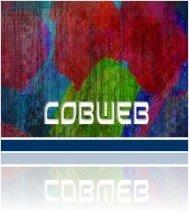 440network : Detunized releases Cobweb multi-format library - macmusic