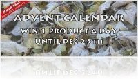 Virtual Instrument : AudioThing Christmas Sale and Advent Calendar Gifts - macmusic